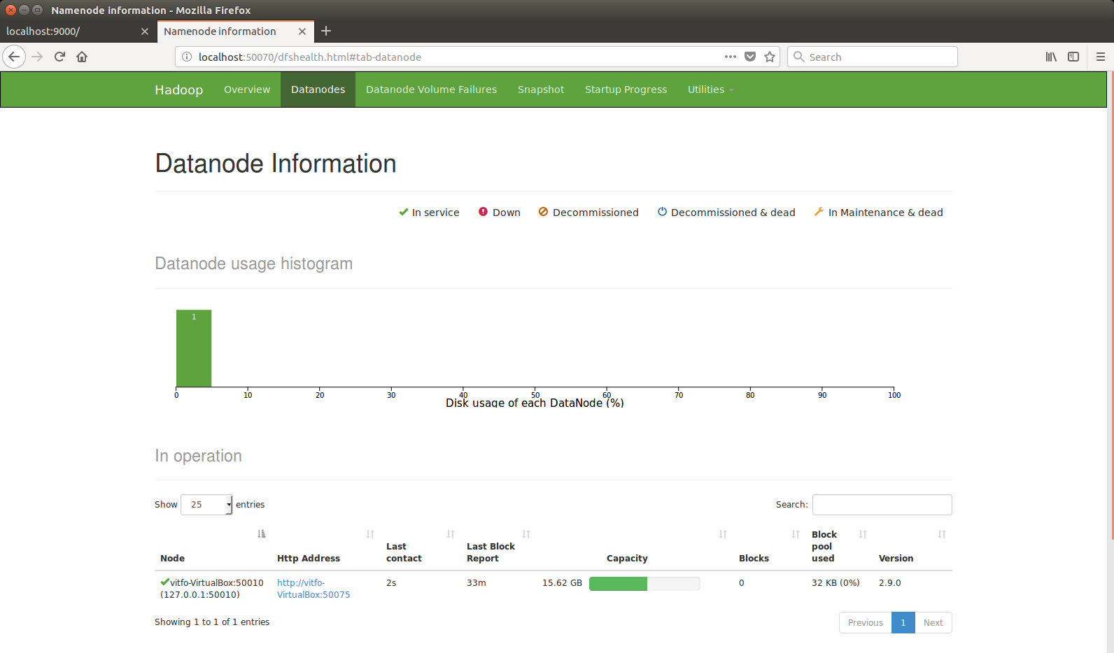 hadoop-web-datanodes