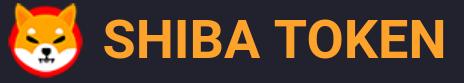 Vzestup a pád Shiba coin během jednoho týdne